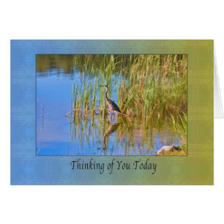 Thinking of You, Tricolored Heron, Reflections Card