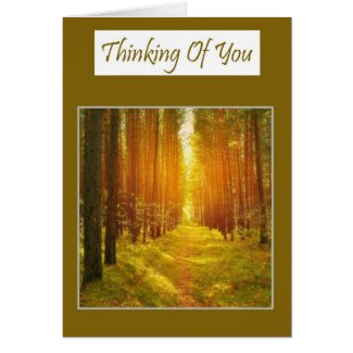 Thinking of you with a sunlit pathway sympathy greeting cards