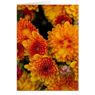 Thinking of you yellow with orange mum card