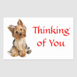 Thinking of You Yorkshire Terrier Dog   Stickers