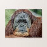 Thinking Orangutan Jigsaw Puzzles