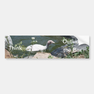 Thinking Outside the Box Car Bumper Sticker