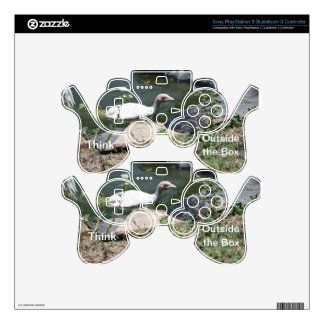 Thinking Outside the Box PS3 Controller Skin