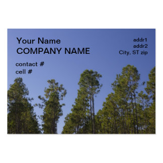 thinned pine stand business card templates