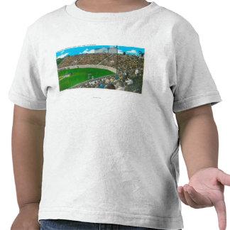 Third Base Line View of Municipal Baseball Shirt
