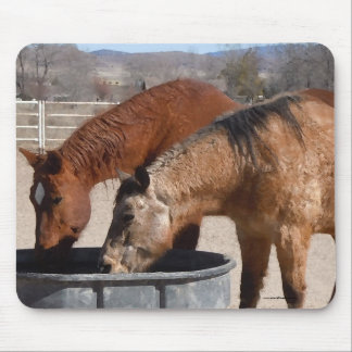 Thirsty Horses Drink at Water Trough Mouse Pad