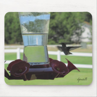 Thirsty Hummingbird and Feeder Mouse Pad