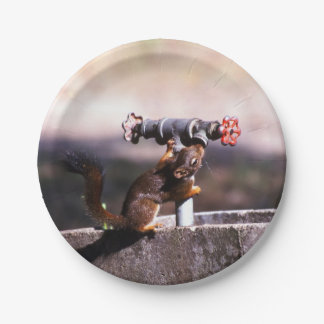 Thirsty Squirrel Paper Plate