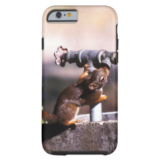 Thirsty squirrel tough iPhone 6 case