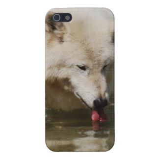 Thirsty Wolf iPhone 5 Case