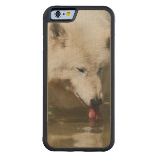 Thirsty Wolf Carved® Maple iPhone 6 Bumper