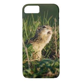 Thirteen-lined Ground Squirrel Eating iPhone 8/7 Case