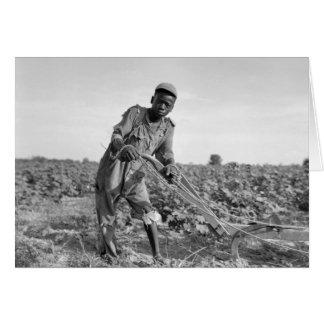 Thirteen-year old Plowing a Field in Georgia Card