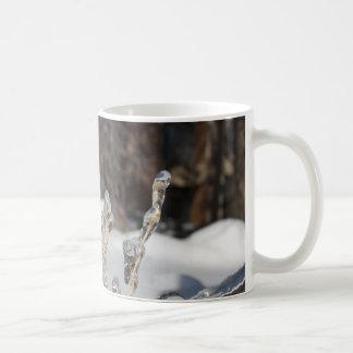 Thirty Four Coffee Mugs