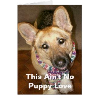 This Ain't No Puppy Love Card Greeting Card