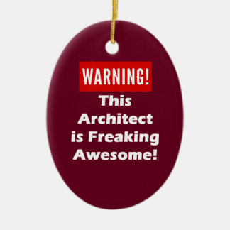 This Architect is Freaking Awesome! Ceramic Ornament