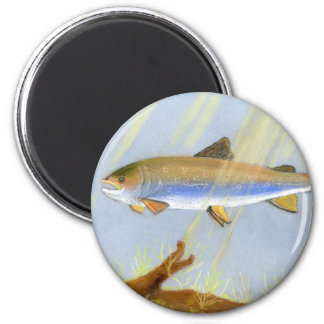 This Award Winning artwork features the Brook Trou 2 Inch Round Magnet