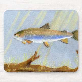 This Award Winning artwork features the Brook Trou Mouse Pad