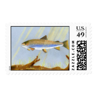 This Award Winning artwork features the Brook Trou Stamp