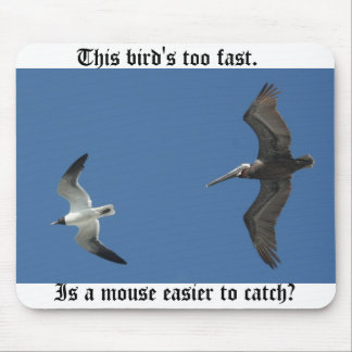 This bird's too fast. mouse pad