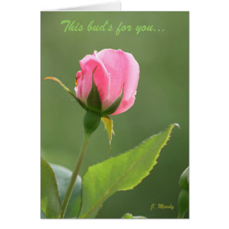 This Bud's for You Card