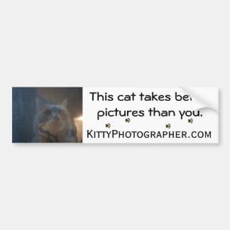 This cat takes better pictures bumper sticker
