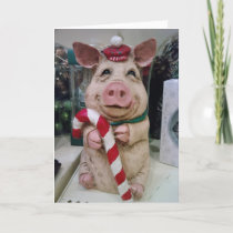 THIS CHRISMAS PIG WISHES U A HAPPY CHRISTMAS HOLIDAY CARD