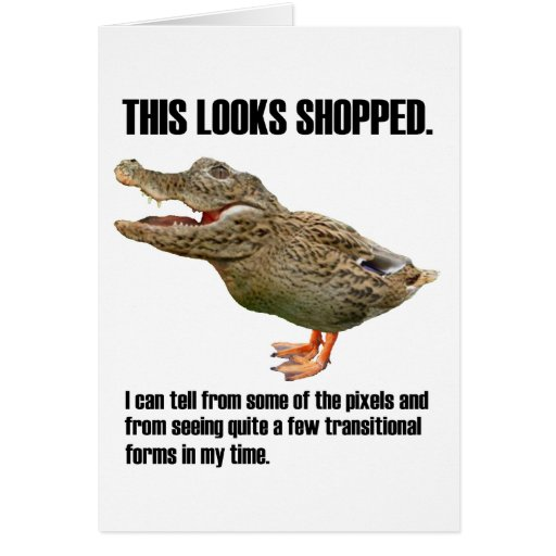 This Crocoduck Looks Shopped Card