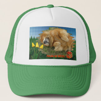 this day is my day trucker hat