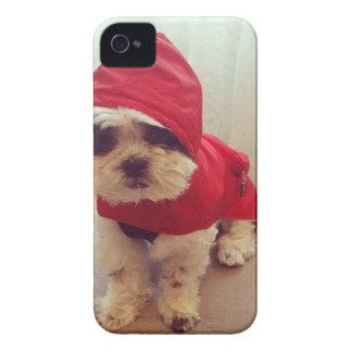 This dog hates rain iPhone 4 case