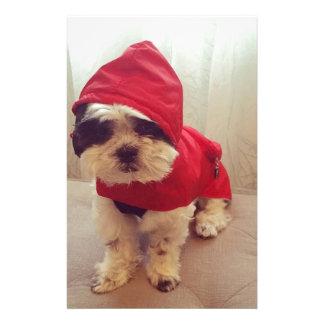 This dog hates rain stationery