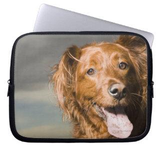 This dog is part golden retriever. laptop sleeve