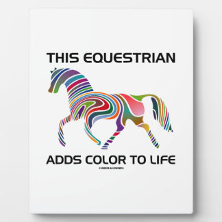 This Equestrian Adds Color To Life (Color Swirl) Plaque