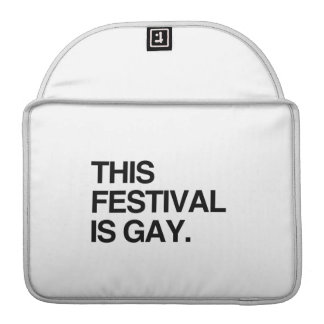 This festival is gay MacBook pro sleeve