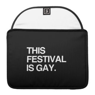 This festival is gay sleeve for MacBooks