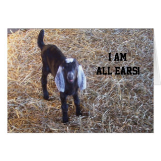 "THIS GOAT IS ""ALL EARS"" - MUTUAL BIRTHDAY CARD"