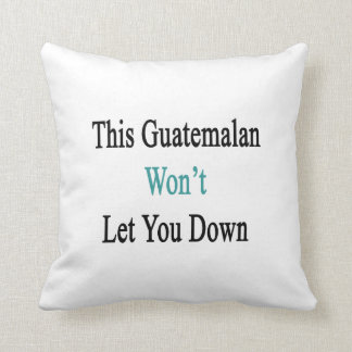 This Guatemalan Won't Let You Down Pillow
