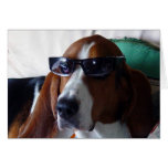 This hound dog is one kool kat greeting card