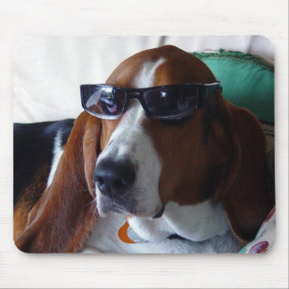 This hound dog is one kool kat mouse pad