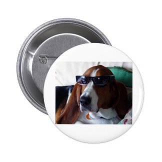 This hound dog is one kool kat pinback button