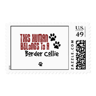 This Human Belongs to a Border Collie Postage Stamp
