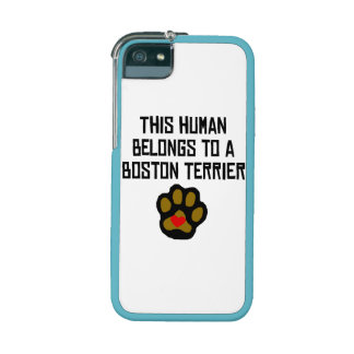 This Human Belongs To A Boston Terrier iPhone 5/5S Case