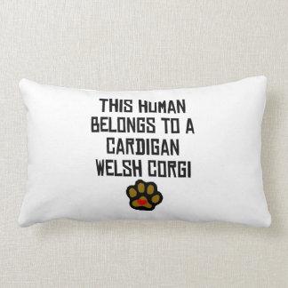 This Human Belongs To A Cardigan Welsh Corgi Pillows