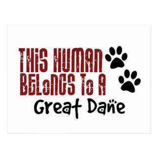 This Human Belongs to a Great Dane Postcard
