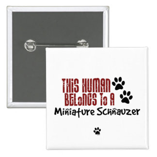 This Human Belongs to a Miniature Schnauzer Pinback Button
