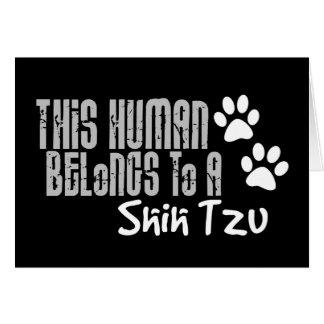 This Human Belongs to a Shih Tzu Greeting Card