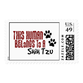 This Human Belongs to a Shih Tzu Postage