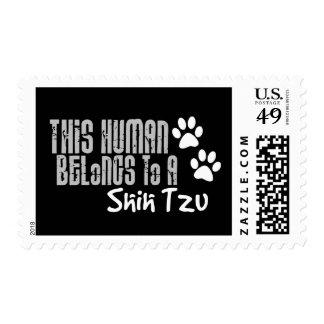 This Human Belongs to a Shih Tzu Stamps