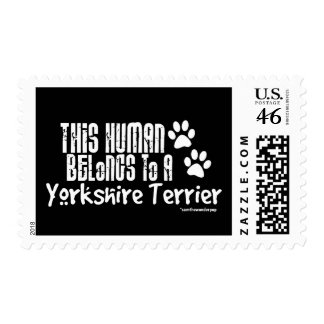 This Human Belongs to a Yorkshire Terrier Postage Stamps