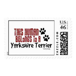 This Human Belongs to a Yorkshire Terrier Postage